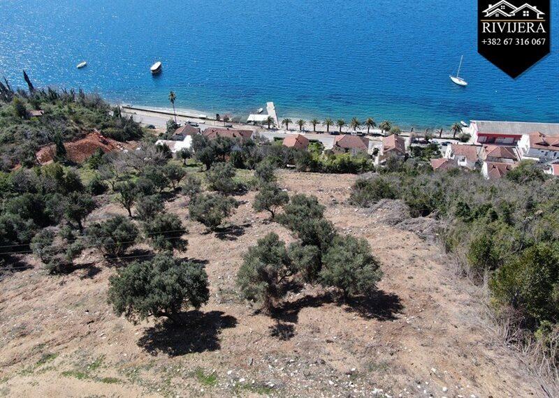 rivijera-nekretnine-herceg-novi-crna_gora-montenegro-real-estate-agency-boka-bay(48)_20200403_1692017287