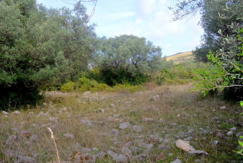 for_sale_land_boka_bay_herceg_novi_for_sale_land_kotor_plac_zeljiste_lend_hreceg_novi__rivijera_nekretnine_montenegro(412)_20161208_1865459987