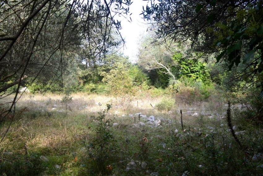 for_sale_land_boka_bay_herceg_novi_for_sale_land_kotor_plac_zeljiste_lend_hreceg_novi__rivijera_nekretnine_montenegro(413)_20161208_1711622057