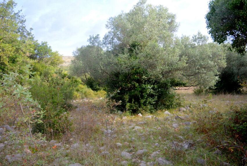 for_sale_land_boka_bay_herceg_novi_for_sale_land_kotor_plac_zeljiste_lend_hreceg_novi__rivijera_nekretnine_montenegro(414)_20161208_1286080584