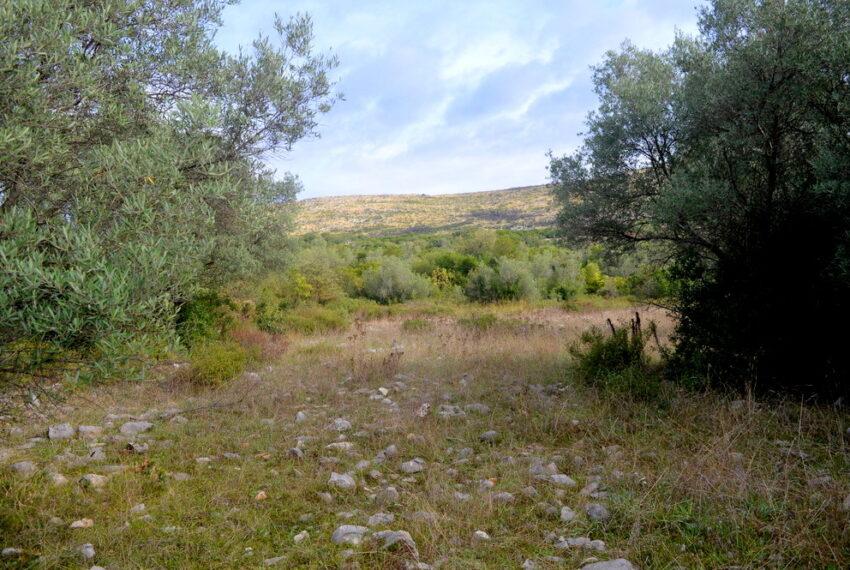 for_sale_land_boka_bay_herceg_novi_for_sale_land_kotor_plac_zeljiste_lend_hreceg_novi__rivijera_nekretnine_montenegro(415)_20161208_1180084891